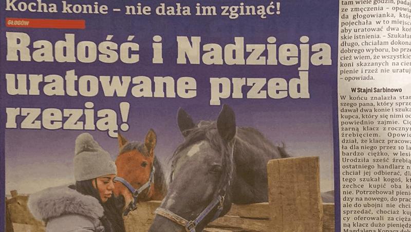 Dzięki nam konie nie poszły narzeź – Głos Głogowa